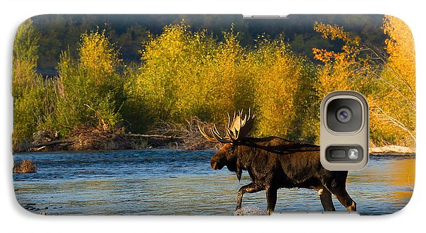 Galaxy Case featuring the photograph Moose Crossing by Aaron Whittemore