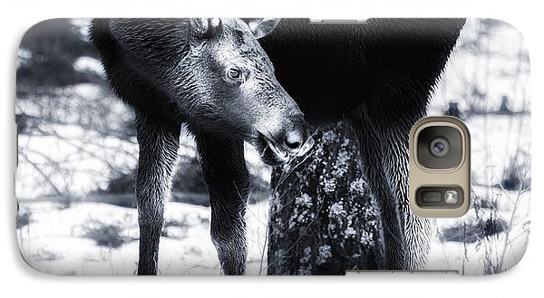 Galaxy Case featuring the photograph Moose by Rose-Maries Pictures