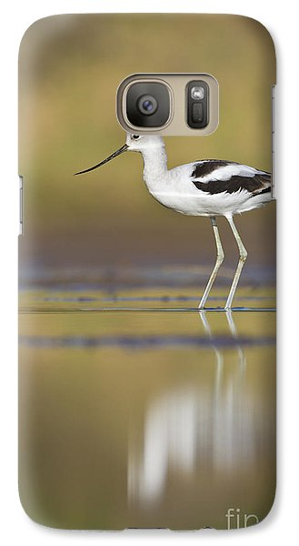 Galaxy Case featuring the photograph Morning Avocet by Bryan Keil