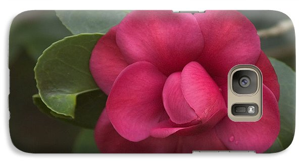 Galaxy Case featuring the photograph Morning Camellia by Penny Lisowski