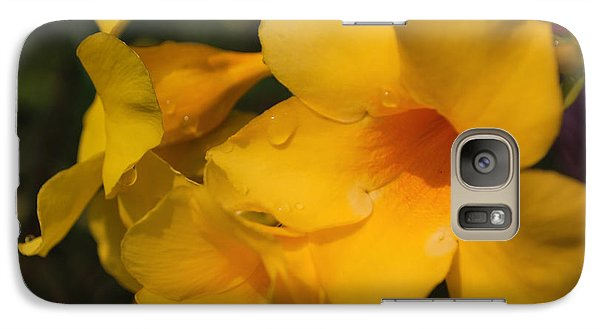 Galaxy Case featuring the photograph Morning  Delight by Miguel Winterpacht