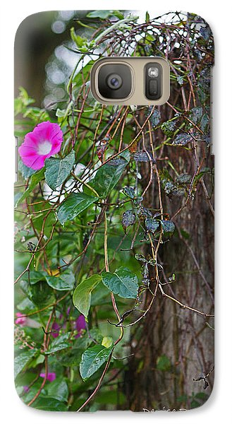Galaxy Case featuring the photograph Morning Glory On The Fence by Denise Romano