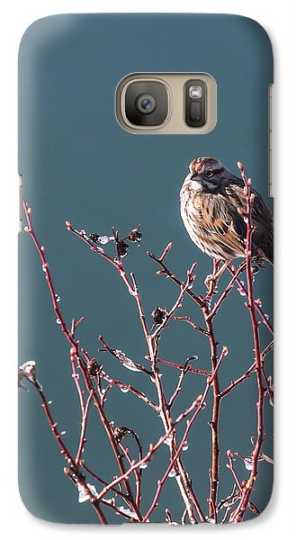 Galaxy Case featuring the photograph Morning Sparrow by Jan Davies