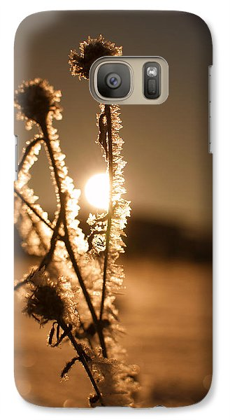 Galaxy Case featuring the photograph Morning Walk by Miguel Winterpacht