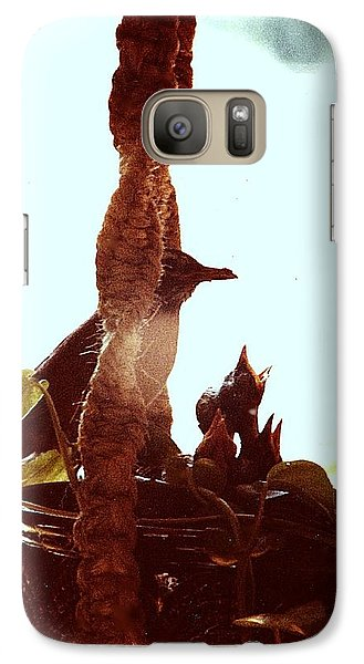 Galaxy Case featuring the photograph Mother Robin Tending To Her Young by James McAdams