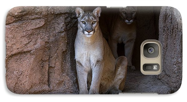 Galaxy Case featuring the photograph Mountain Lion 1 by Arterra Picture Library