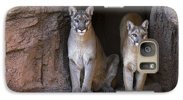 Galaxy Case featuring the photograph Mountain Lion 2 by Arterra Picture Library