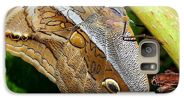 Galaxy Case featuring the photograph Mournful Owl Butterfly by Amy McDaniel