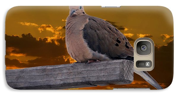 Galaxy Case featuring the photograph Mourning Dove Orange Sky by Marjorie Imbeau