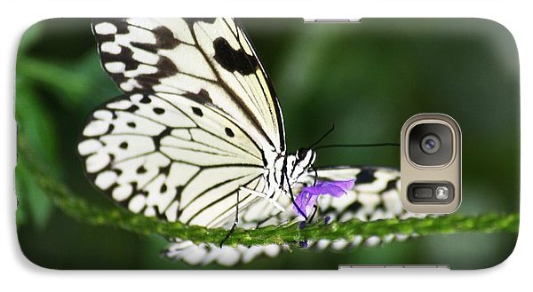 Galaxy Case featuring the photograph Mr. B by Mary Lou Chmura