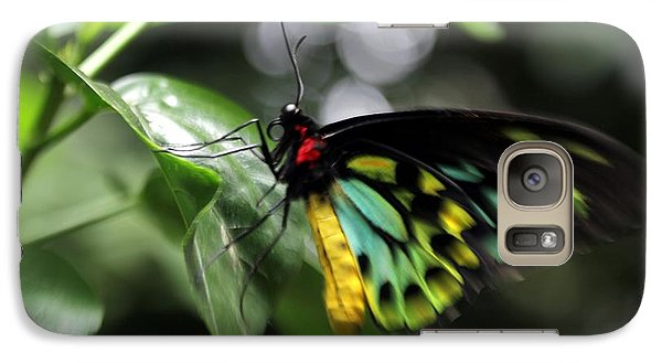 Galaxy Case featuring the photograph Mr. Cairns Birdwing by Mary Lou Chmura