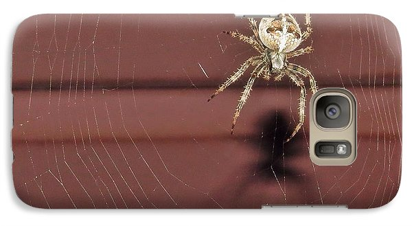 Galaxy Case featuring the photograph Mr Spidey by Nikki McInnes