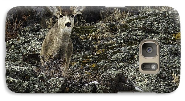 Galaxy Case featuring the photograph Mule Deer Buck by Susi Stroud