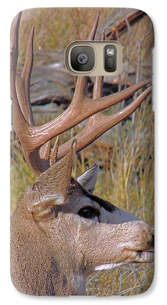 Galaxy Case featuring the photograph Mule Deer by Lynn Sprowl