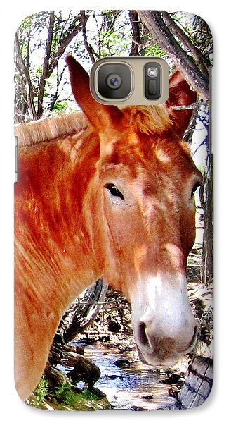 Galaxy Case featuring the photograph Muley by Marilyn Diaz