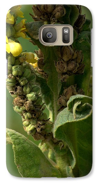 Galaxy Case featuring the photograph Mullen by Michael Dohnalek