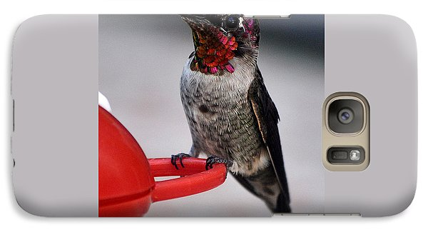 Galaxy Case featuring the photograph Multi Colored Hummingbird Male Anna by Jay Milo