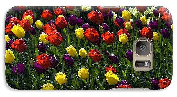 Galaxy Case featuring the photograph Multicolored Tulips At Tulip Festival. by Yulia Kazansky