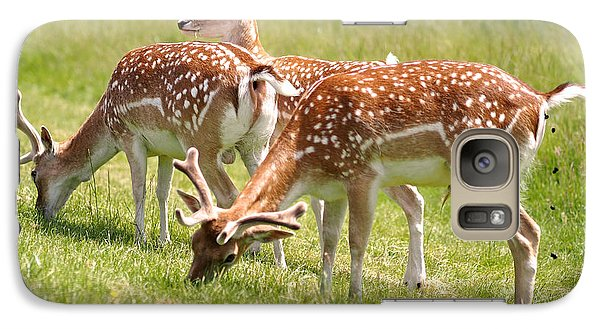 Multitasking Deer In Richmond Park Galaxy Case by Rona Black