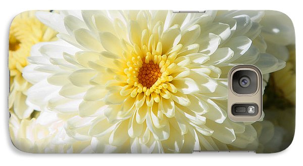 Galaxy Case featuring the photograph Mums The Word by Courtney Webster