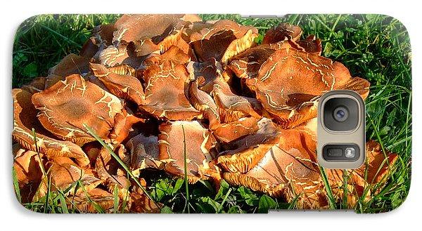 Galaxy Case featuring the photograph Mushroom by Deborah DeLaBarre