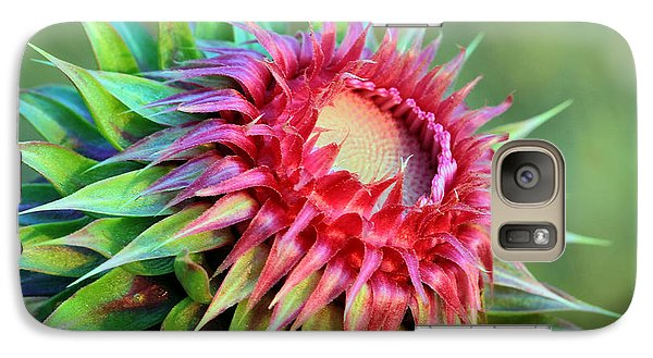 Galaxy Case featuring the photograph Musk Thistle by Teresa Zieba