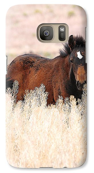 Galaxy Case featuring the photograph Mustang Colt In The Grasses by Vinnie Oakes