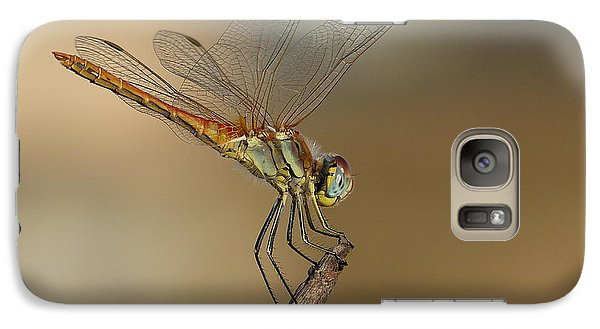 Galaxy Case featuring the photograph My Best Dragonfly by Janina  Suuronen