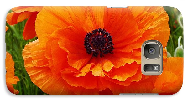 Galaxy Case featuring the photograph My Bright And Shining Poppy by Jeanette Oberholtzer