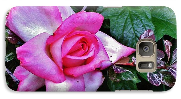 Galaxy Case featuring the photograph My Perfect Tea Rose by VLee Watson