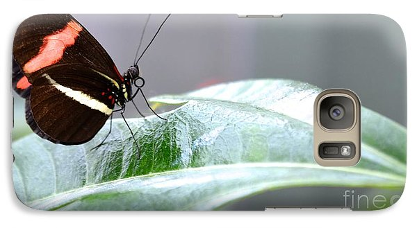 Galaxy Case featuring the photograph My Pretty Butterfly by Carla Carson