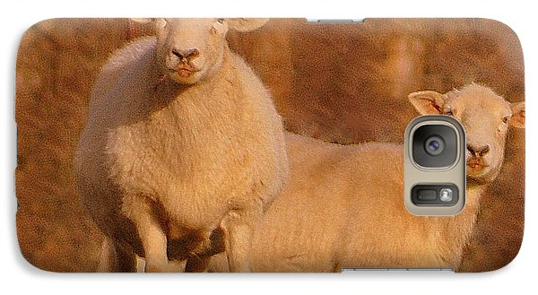 Galaxy Case featuring the photograph My Sheep ...   by Lydia Holly