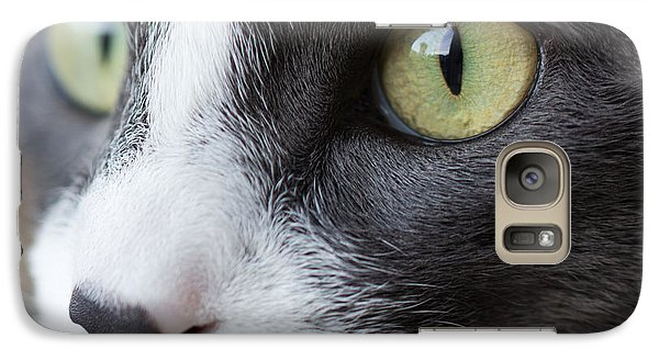 Galaxy Case featuring the photograph My Sweet Boy by Heidi Smith