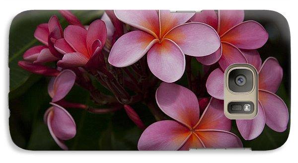Na Lei Pua Melia O Wailua - Pink Tropical Plumeria Hawaii Galaxy S7 Case