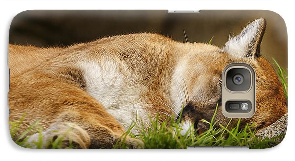 Galaxy Case featuring the photograph Nap Time  by Brian Cross