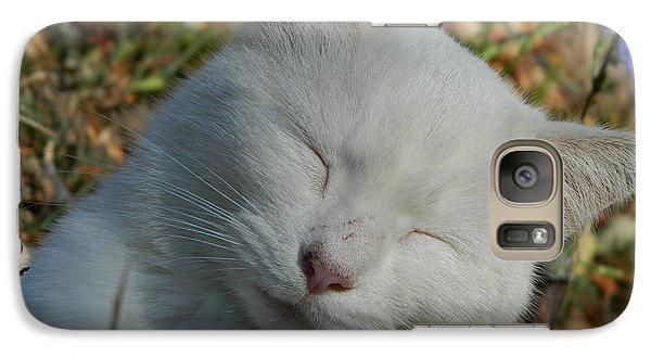 Galaxy Case featuring the photograph Napping Barn Cat by Kathy Barney