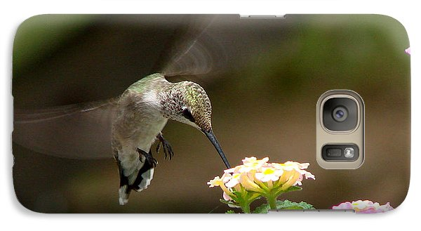 Galaxy Case featuring the photograph Nature's Dinner by Linda Cox