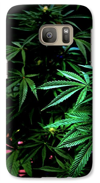 Galaxy Case featuring the photograph Nature's Medicine by Jeanette C Landstrom