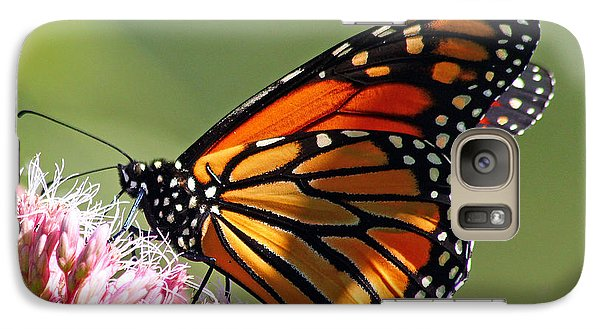 Galaxy Case featuring the photograph Nectaring Monarch Butterfly by Debbie Oppermann