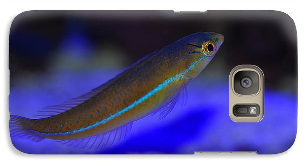 Galaxy Case featuring the photograph Neon Wrasse  by Puzzles Shum