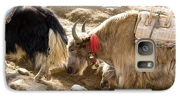 Nepal Yak Move Along The Everest Base Galaxy Case by David Noyes