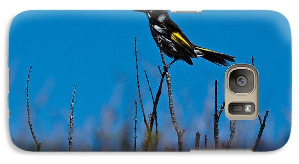 Galaxy S7 Case featuring the photograph New Holland Honeyeater by Miroslava Jurcik