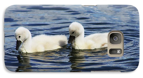 Galaxy Case featuring the photograph Newborn Mute Swans by Alyce Taylor