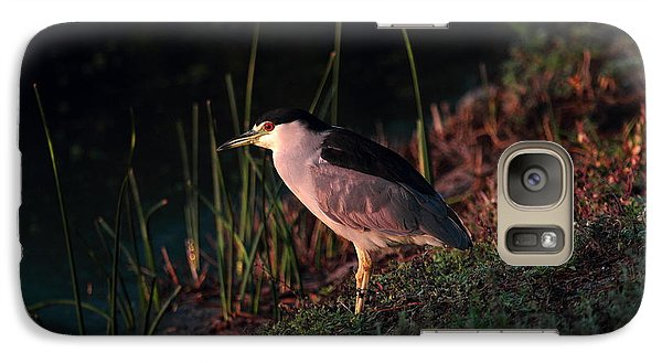 Galaxy Case featuring the photograph Night Heron  by Duncan Selby