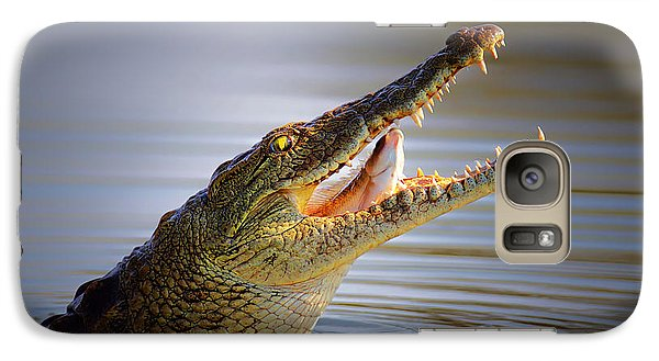 Nile Crocodile Swollowing Fish Galaxy Case by Johan Swanepoel