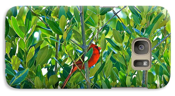 Galaxy Case featuring the photograph Northern Cardinal Hiding Among Green Leaves by Cyril Maza