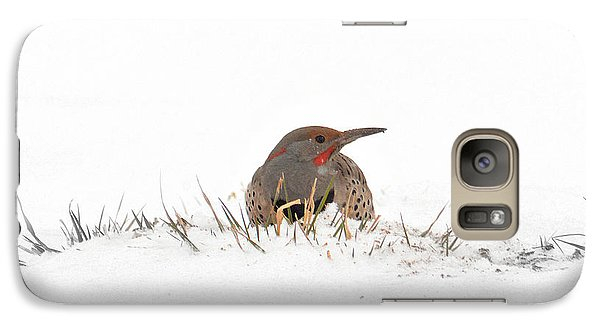 Galaxy Case featuring the photograph Northern Flicker by Al  Swasey