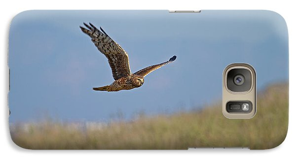 Galaxy Case featuring the photograph Northern Harrier In Flight by Duncan Selby
