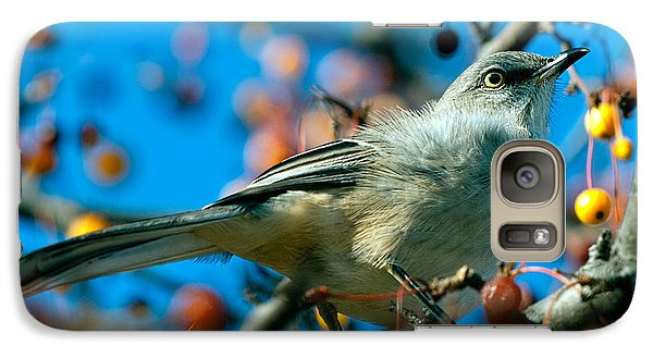 Mockingbird Galaxy S7 Case - Northern Mockingbird by Bob Orsillo