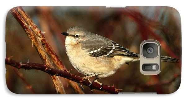 Northern Mockingbird Mimus Polyglottos Galaxy S7 Case by Paul J. Fusco